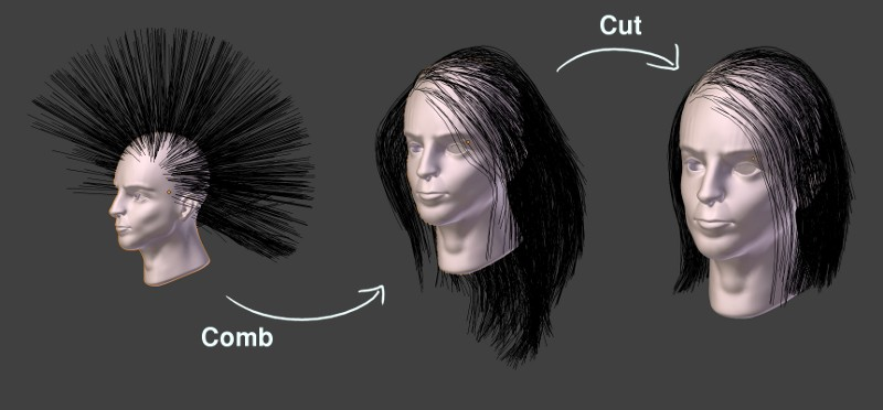 Hair In Blender Bensimonds Com